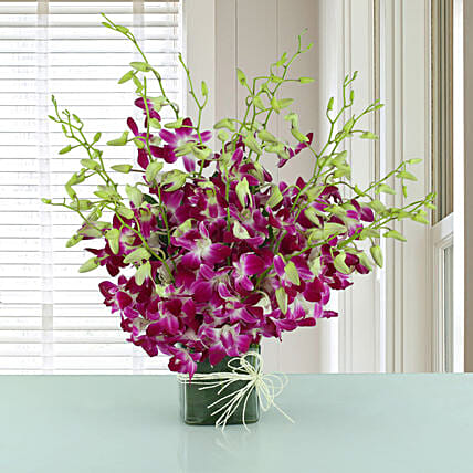 Exotic Expression - Arrangement of 20 purple orchids in glass vase.