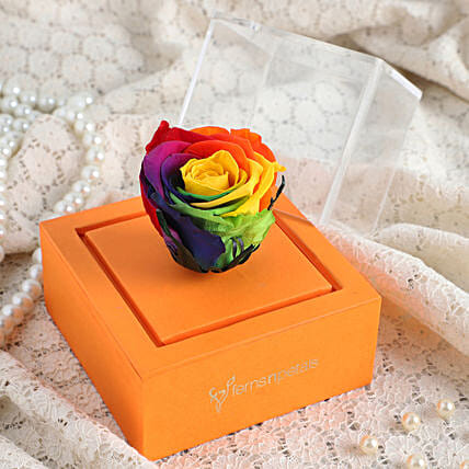 online rainbow infinity rose in orange box online