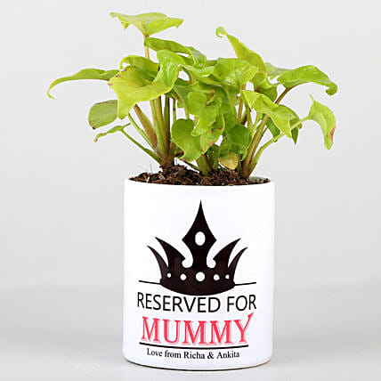 happy mothers day  indoor plant n printed coffee mug